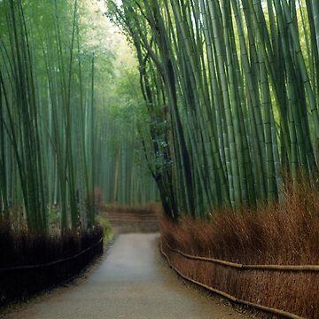 Bamboo forest scenery in Arashiyama Kyoto art photo print by AwenArtPrints