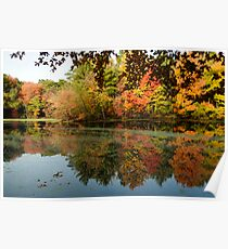 North Andover pond Poster