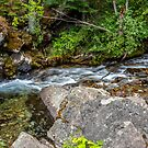 Graves Creek Above the Falls by Bryan D. Spellman