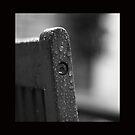 Still Wet Outside.... by GerryMac