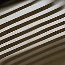 Diagonal Reflection by Shawna Rowe