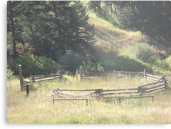 Old Stock Corral by May Lattanzio