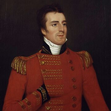 Duke of Wellington as a Major General - Arthur Wellesley Portrait - 1804 by warishellstore