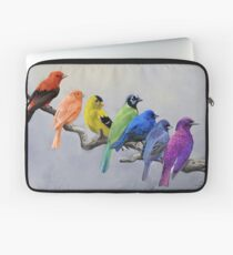 Birds of all Colors Laptop Sleeve