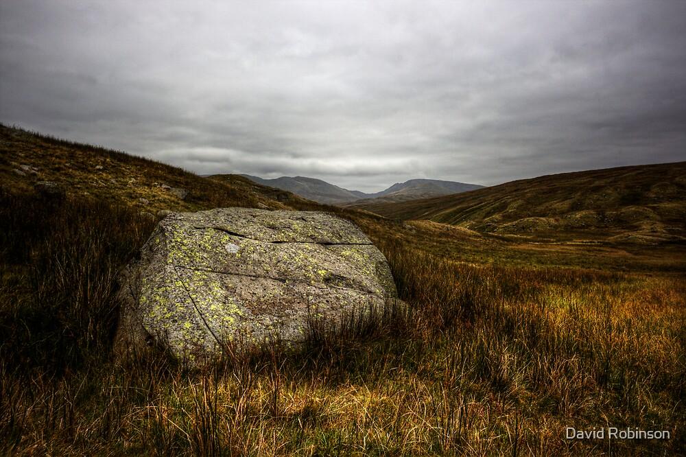 Wythburn Valley #1 by David Robinson
