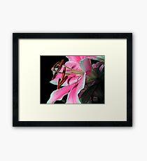 Lily on Black Framed Print