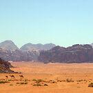 Ships of the Desert by berndt2