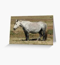 Heavy Load  Greeting Card