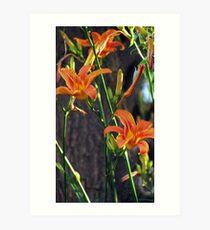 Orange Flowers with stems Art Print