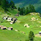 Swiss Alps by Citrusali