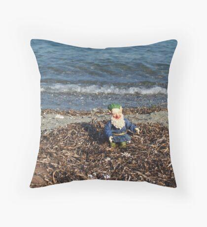 Jasper Visits the Bay Throw Pillow