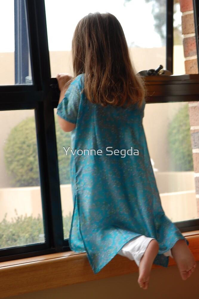 looking through the window by Yvonne Segda