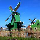 Dutch Windmill by annalisa bianchetti