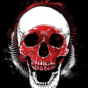 Japan skull samurai by GeschenkIdee