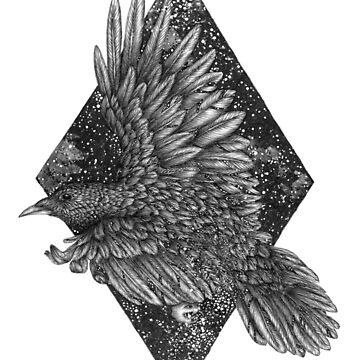 Cosmic Raven by ECMazur