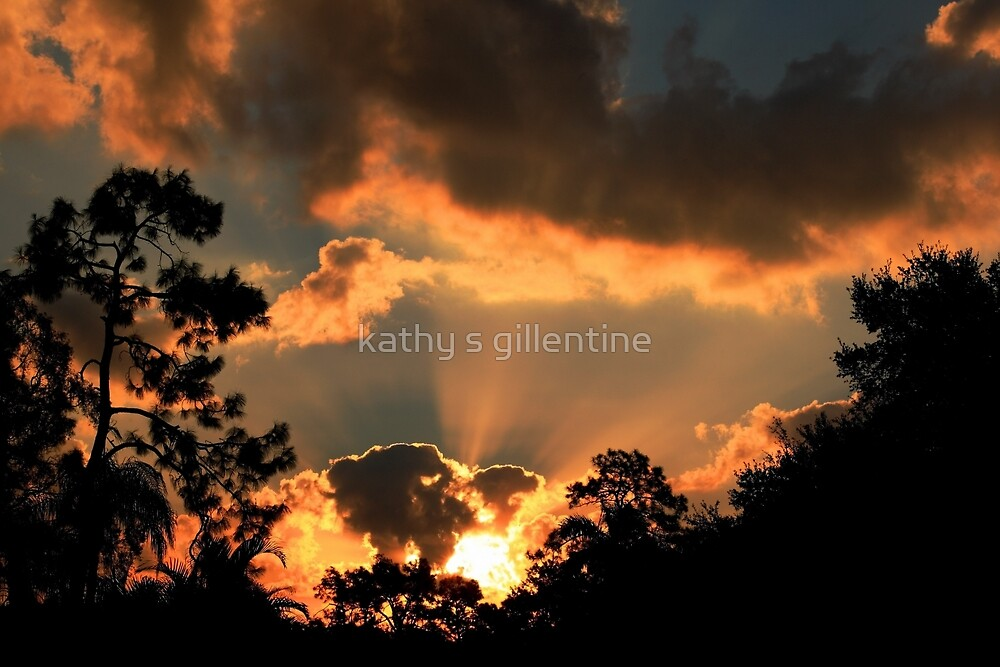 The morning  offering by kathy s gillentine
