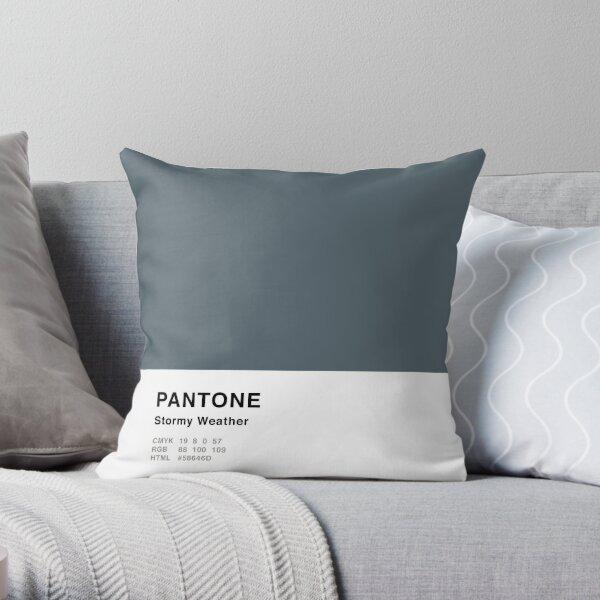 Clima tempestuoso Pantone gris Diseño simple Cojín