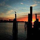 morning silhouettes by kathy s gillentine