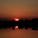 Morning has broken by kathy s gillentine