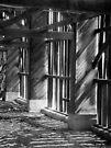 The Empty Barn by Carla Wick/Jandelle Petters