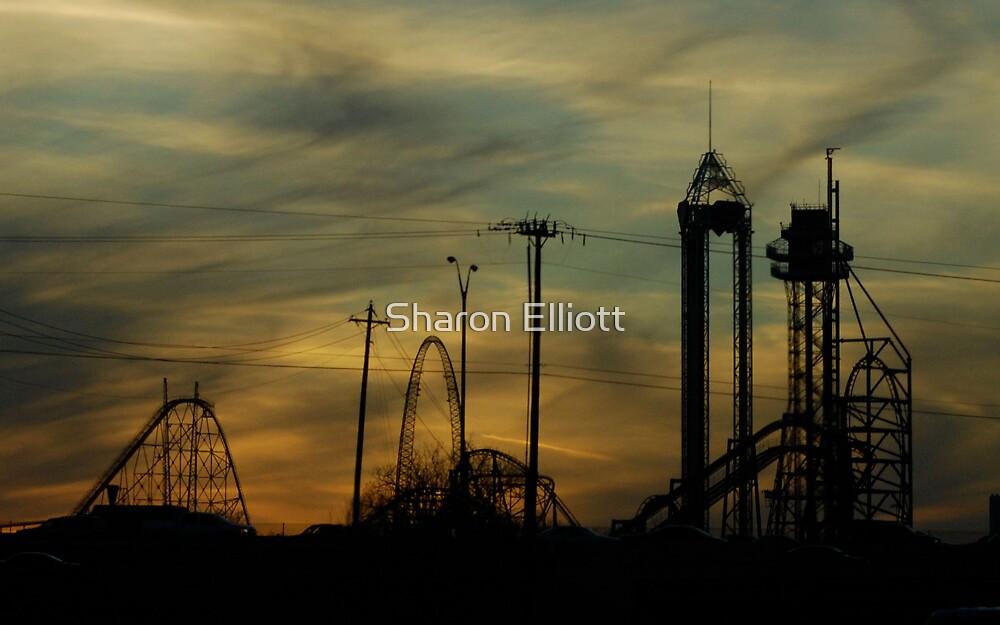 High Ride At Sunset by Sharon Elliott