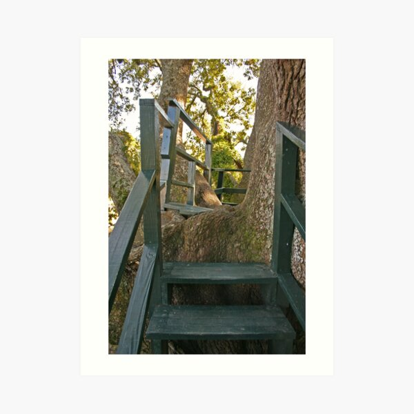 Come into my treehouse... Art Print