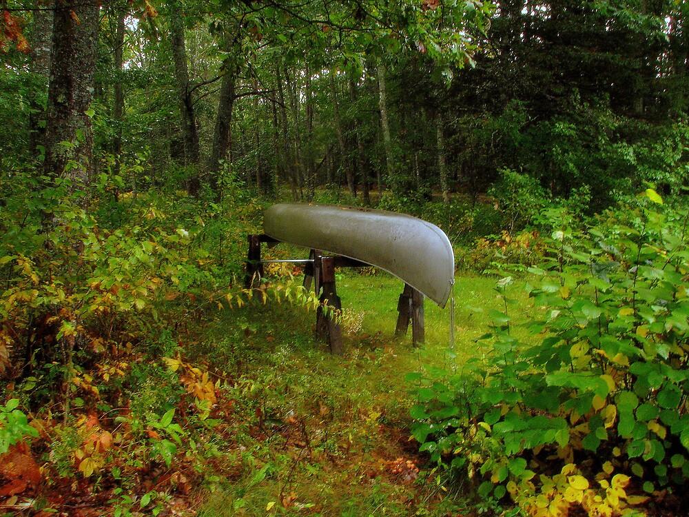 canoe in morning rain by Patty Gross