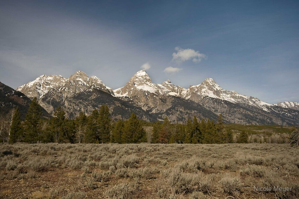 Grand Teton National Park by Nicole Meyer