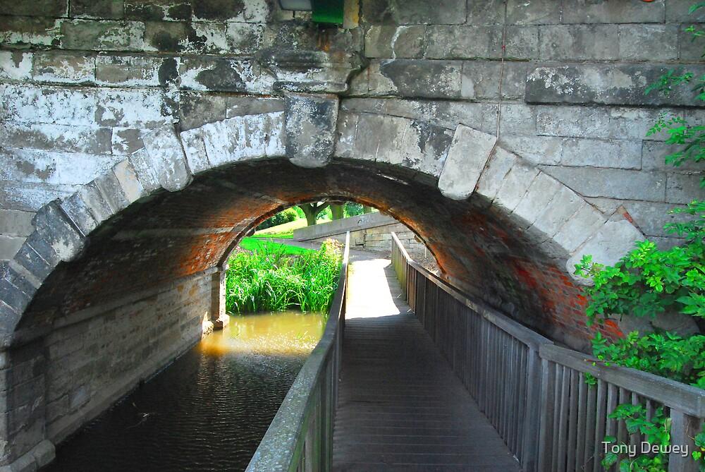 Bridge under a Bridge by Tony Dewey