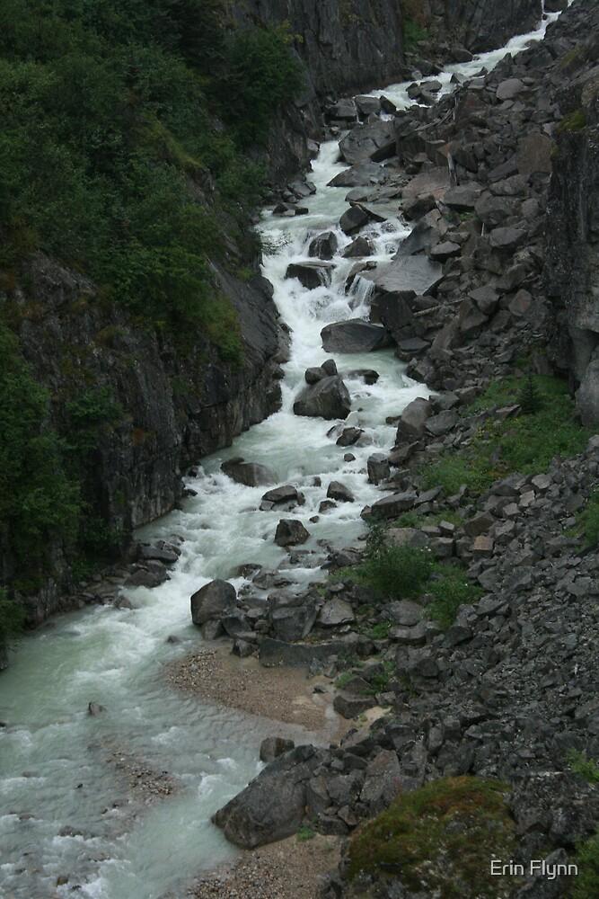 Alaskan River by Erin Flynn