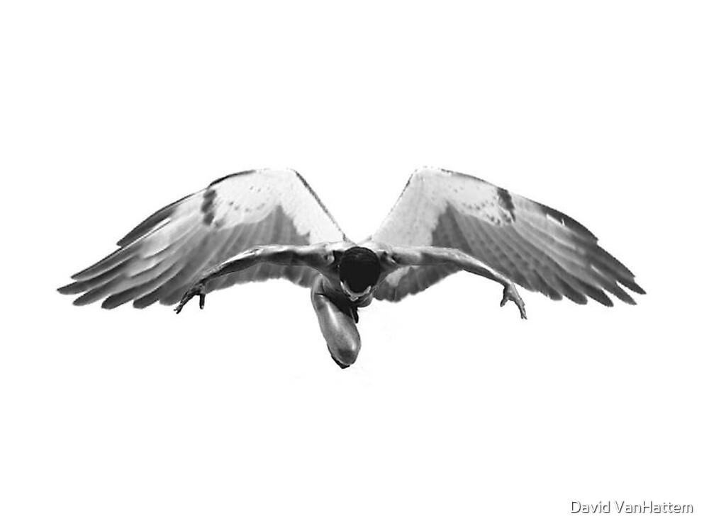 Preying Angel by David VanHattem