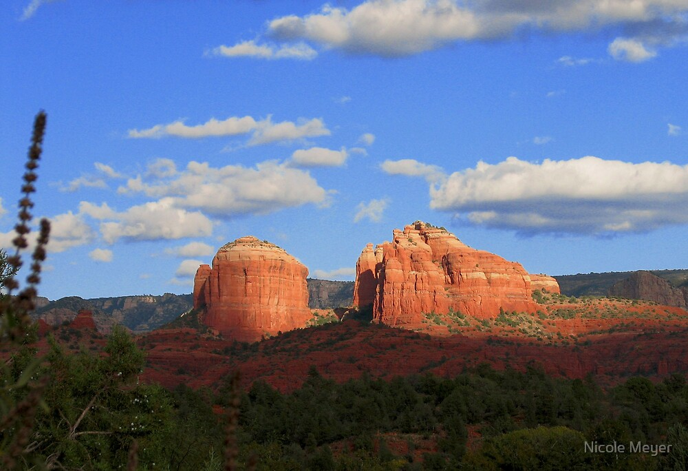 Red Rock by Nicole Meyer
