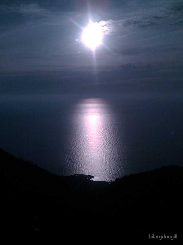moonlight over the sea by hilarydougill