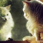 When Will My Reflection Show... by ibjennyjenny