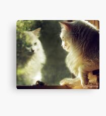 When Will My Reflection Show... Canvas Print