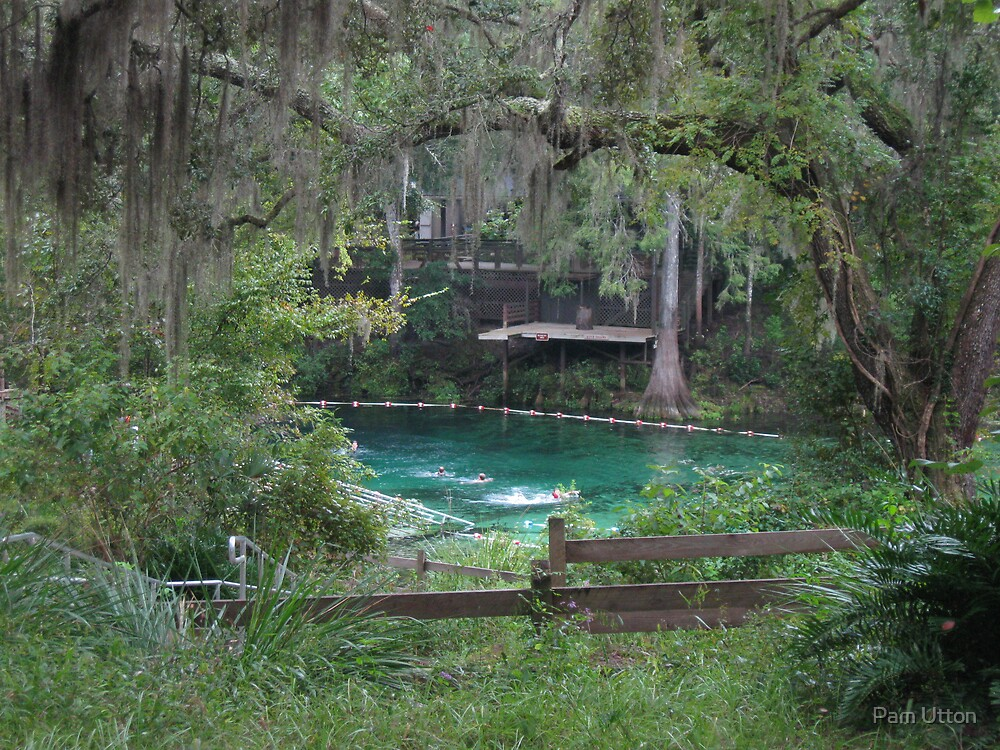 Fanning Springs, FL by Pam Utton