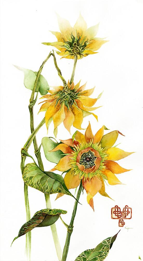 sunflower by armornavy