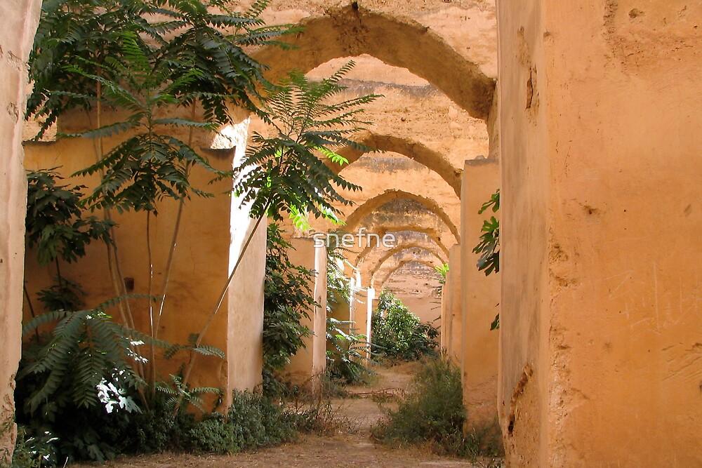 Royal Stables Meknes by snefne
