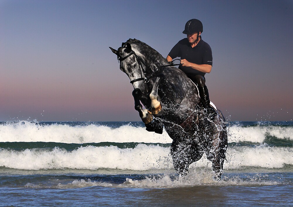 horse in the waves by dave wilmot