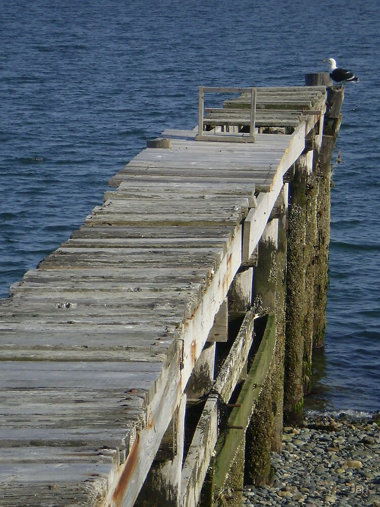 Pier  to the sea by Jeri