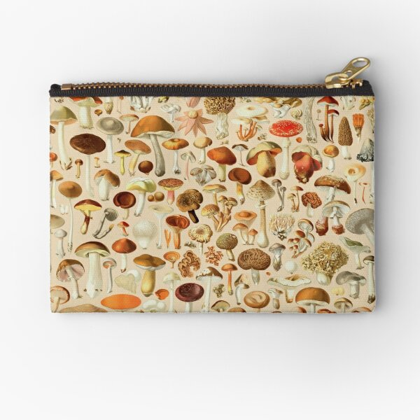 Collection de dessins vintage de champignons Pochette