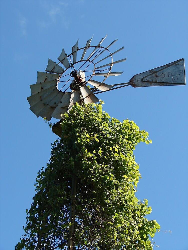 Bly Sky Windmill by angelandspot