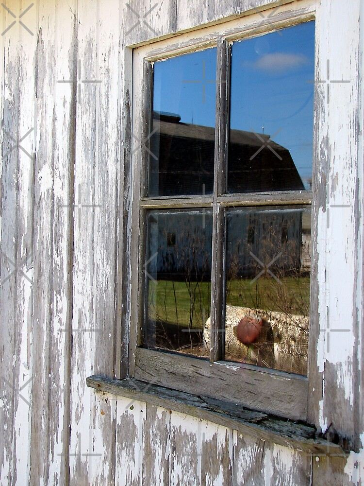 Reflections in the Window by angelandspot