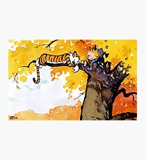 calvin n hobbes sleep Photographic Print