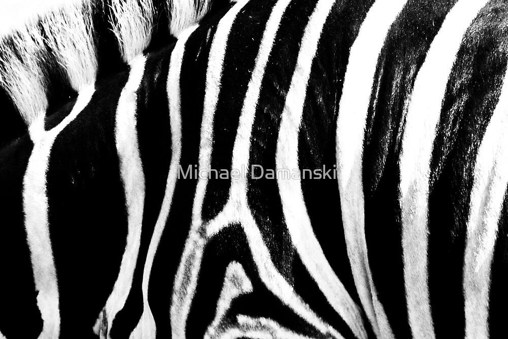 Colorless Stripes by Michael Damanski