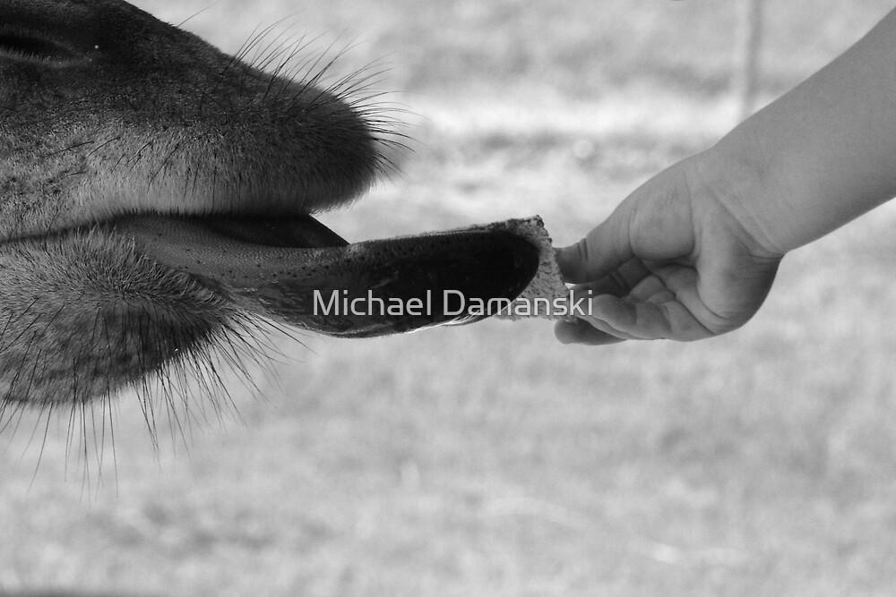 Interaction by Michael Damanski