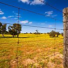 Rural Tranquility by aabzimaging