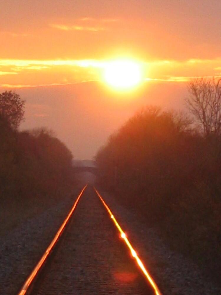 Navan line near Duleek by Munich