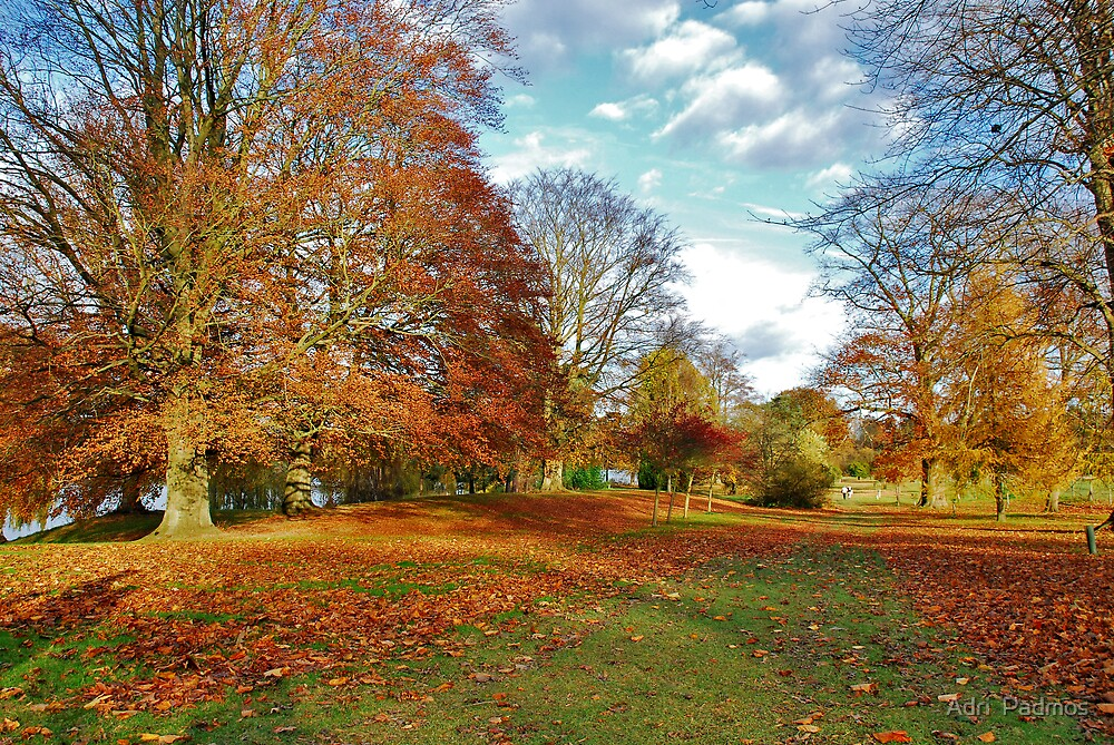 Autumn in Kent (UK) by Adri  Padmos
