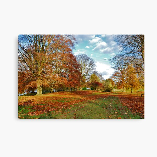 Autumn in Kent (UK) Canvas Print